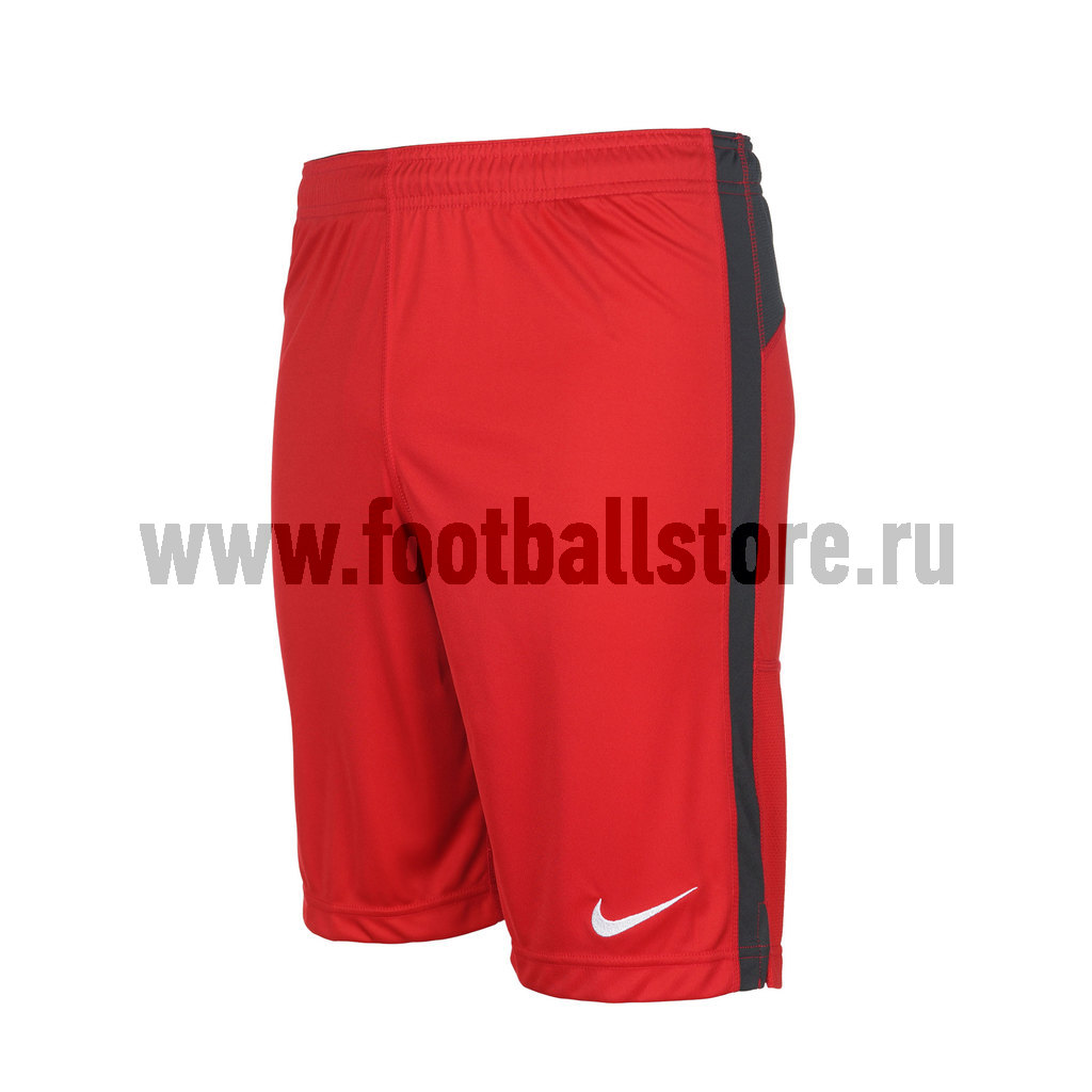 Шорты Nike Шорты Nike Squad Longer Knit Short 544808-657
