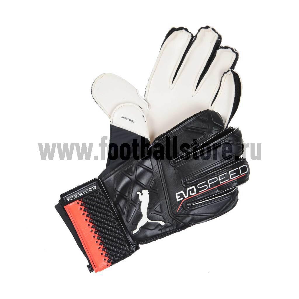 Перчатки вратарские Puma Evospeed 5.5 04128101